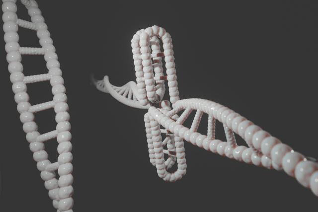 Capitolul 10: Genetica moleculară